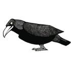 Raven Beer